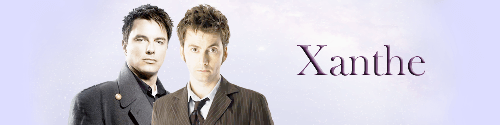 Dr Who Banner by Bluespirit