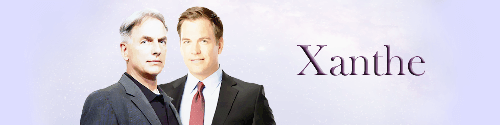 NCIS Banner by Bluespirit