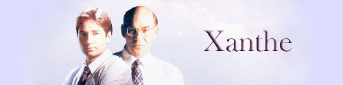X-Files Banner by Bluespirit