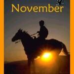 November graphic by Danni